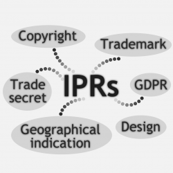ARTISTIC D.T2.1.3 Intellectual Property Rights (IPR) Regulation Database
